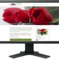 Gestaltung Homepage / Website für Blumeneck Kerstin Kreinacker, Hainichen